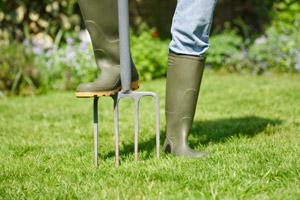lawn aeration - Lawn Treatment
